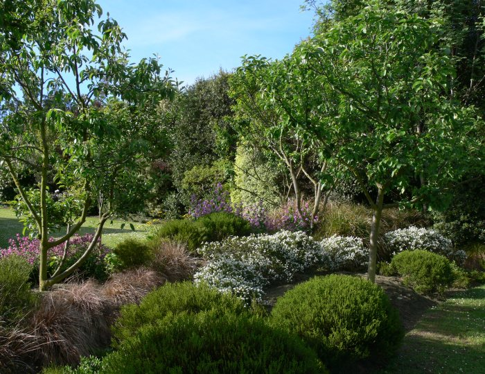The gardens garden view bed and breakfast for Trees for back garden